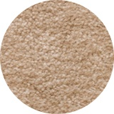 Plush Light Beige Carpet